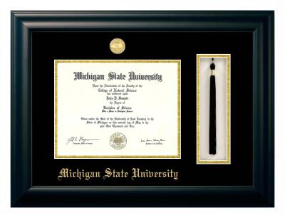 quick info - Michigan State Diploma Frame
